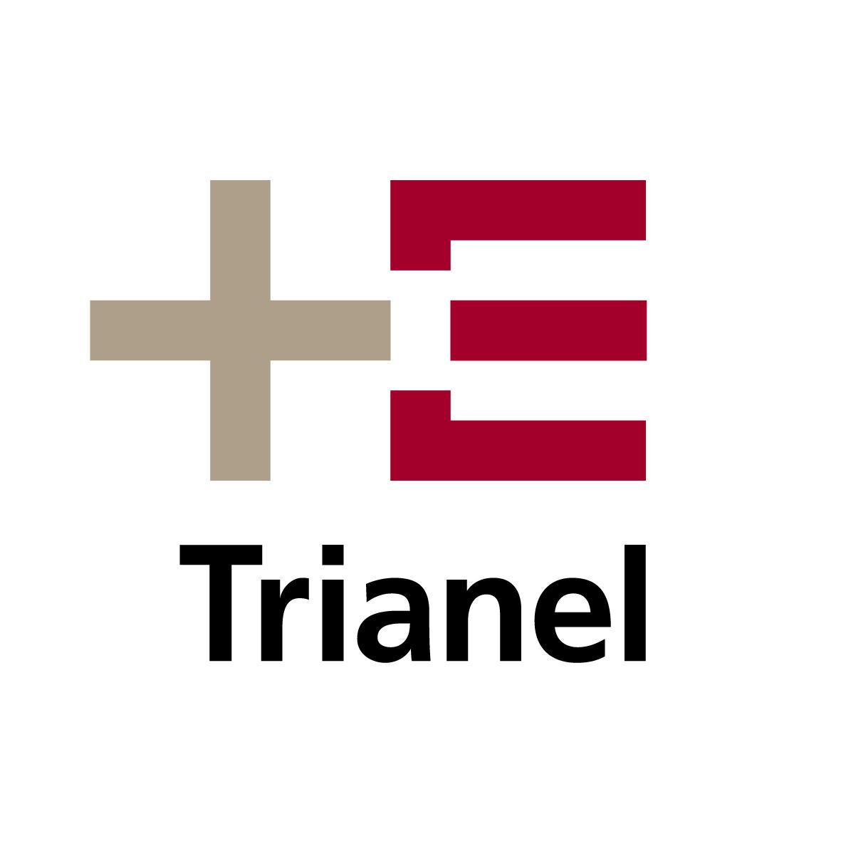 25x25_logo_trianel_claim_cmyk